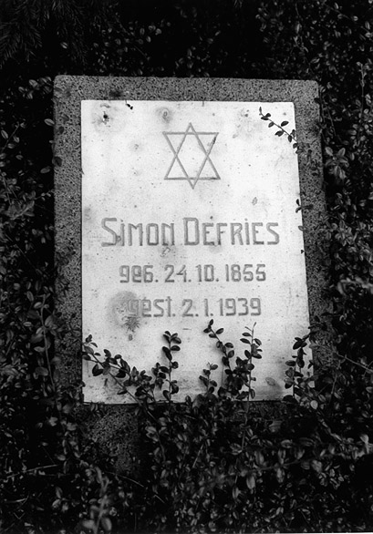Simon Defries 1855 1939
